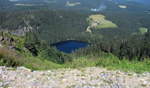 Blick auf den Feldsee